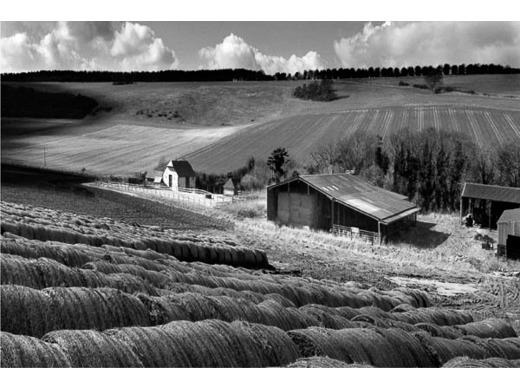 Jevington Farm