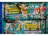 Green Wall, Varanasi
